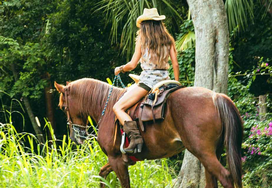 Gorgeous woman riding a horse in jungle