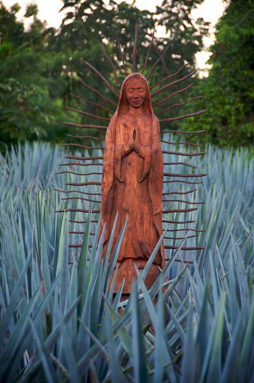 A Virgin Mary statue that can be seen in the jungle near Playa Del Carmen.