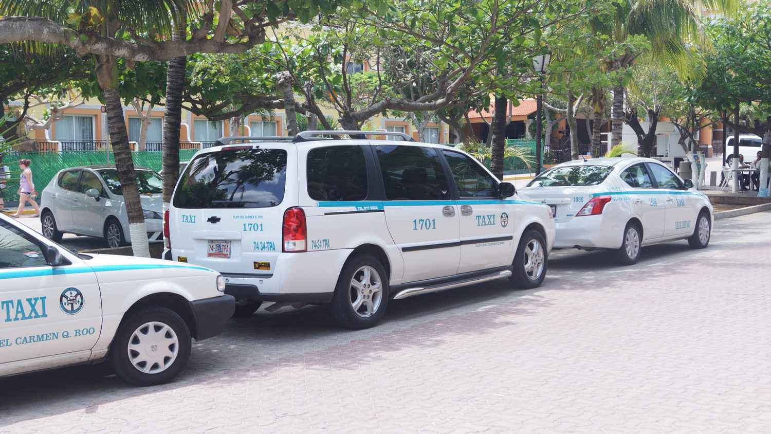 Several taxis lined up on a Playa Del Carmen street.