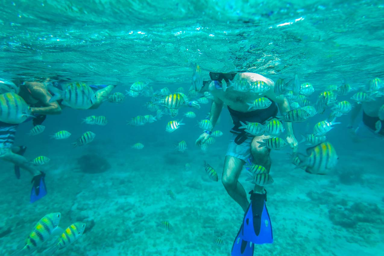 man-in-water-during-booze-cruise-snorkeling-activity-in-playa-del-carmen