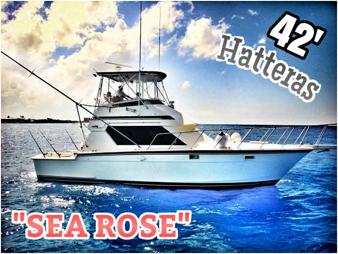 A 42-foot Hatteras deep sea fishing yacht named Sea Rose available for fishing tours in Playa Del Carmen.
