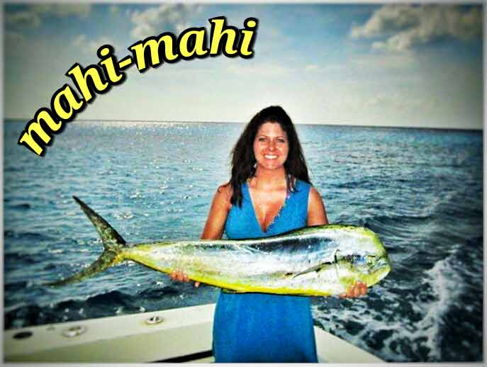 A woman holding a mahi mahi caught near Playa Del Carmen.