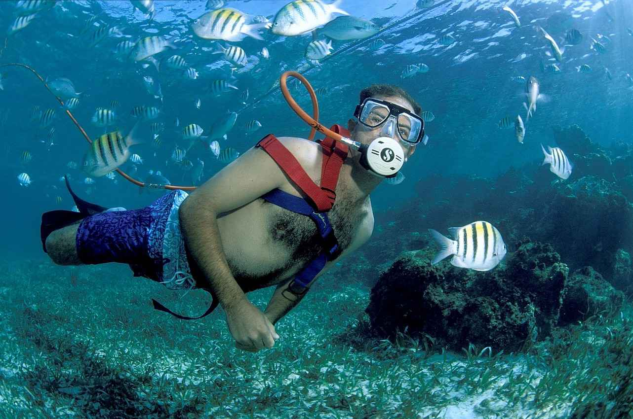 A man snorkeling in shallow water surrounded by multicolored fish.