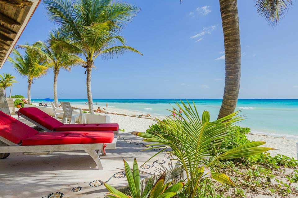 beach-and-palm-tree-view-from-villa-del-mar-patio-in-playacar-beach-house-rental