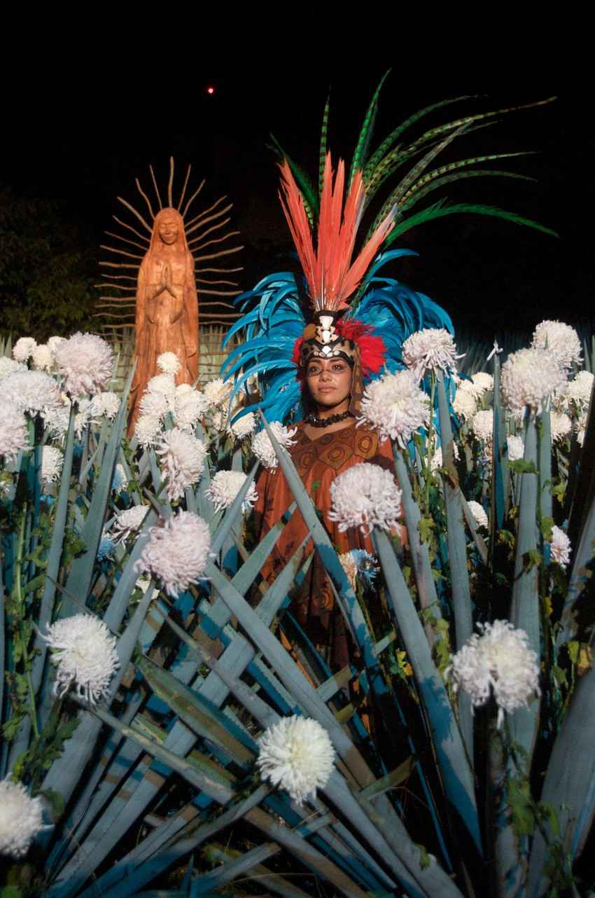 Several Mayan women wearing traditional Mayan clothing near some flowers.
