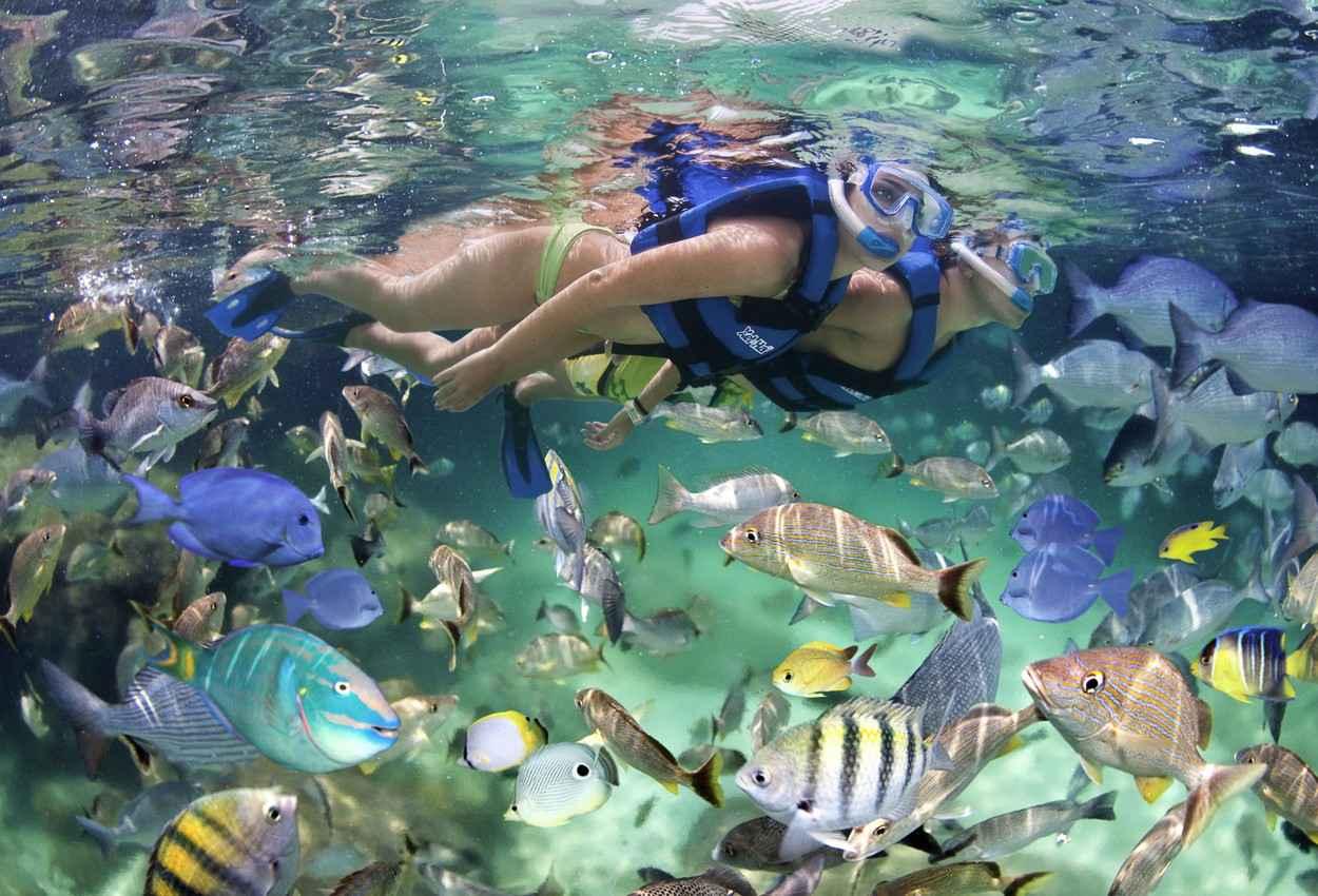 A couple is snorkeling at Xel-Ha natural aquarium.