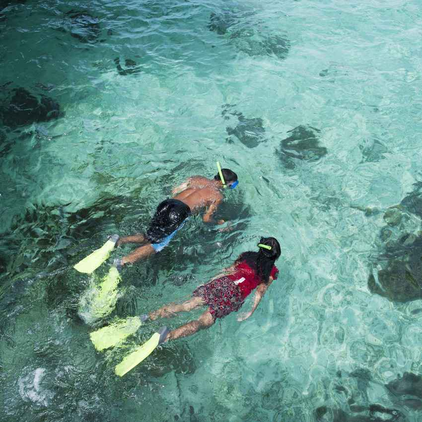 A man and a woman are snorkeling above crystal clear blue water near Playa Del Carmen.