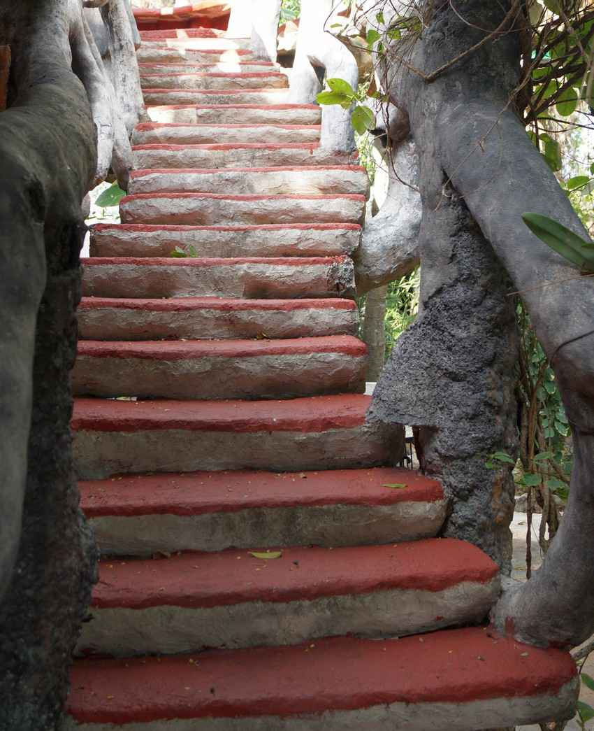 A unique red and white cement stairway supported by natural trees.