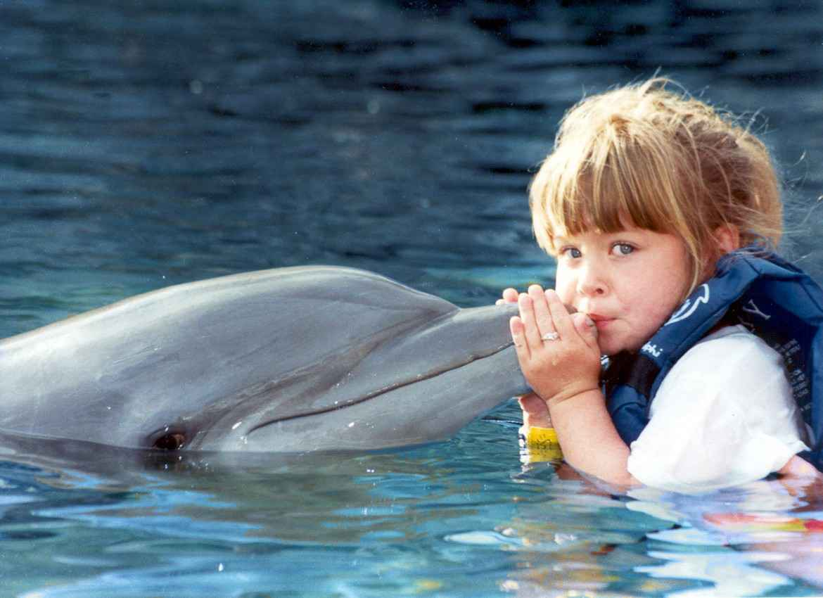 A young girl kissing a dolphin.