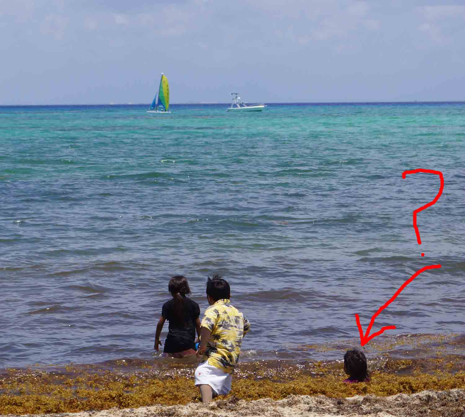 A Mexican child being attacked by seaweed at a Playa Del Carmen beach.