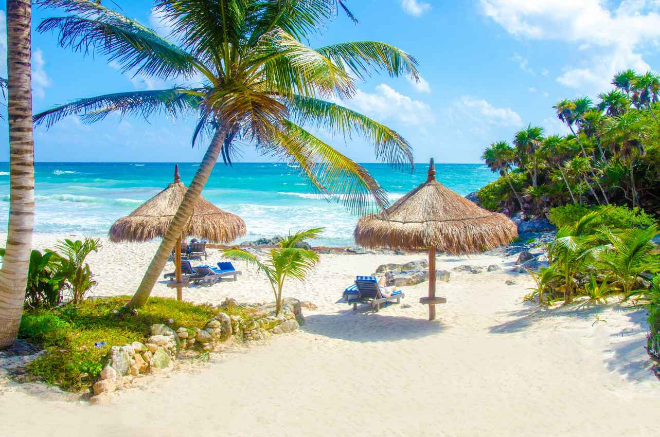 A Beautiful Beach Setting With Palm Trees And Several Palapas In The Sand