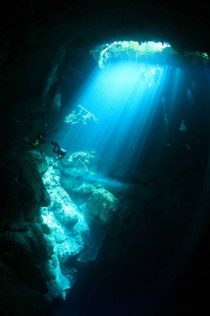 A group of several scuba divers exploring a cenote.
