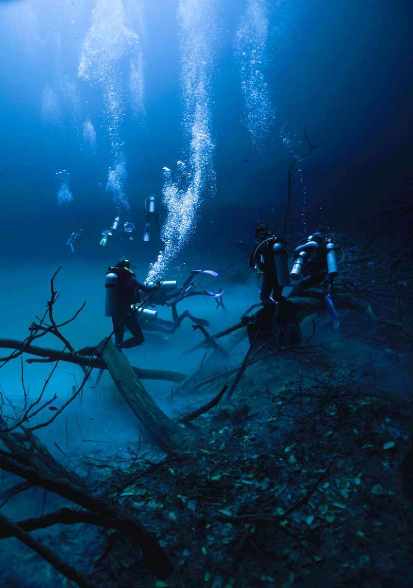 Five scuba divers getting ready to go cave diving in a cenote.