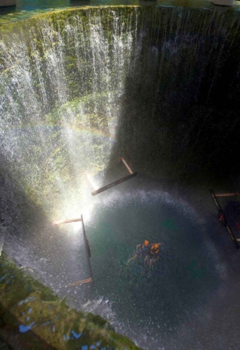 Water falling from the top sides of the ground into a cenote.