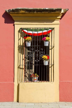 A picture that shows the window protection bars that are common in Playa Del Carmen.
