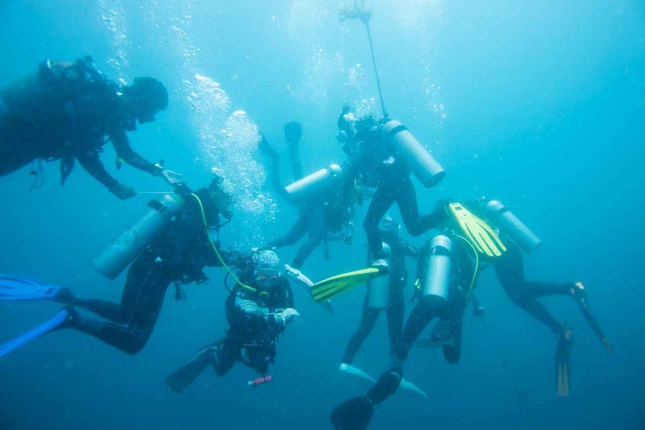 A group of scuba divers diving near Cozumel.
