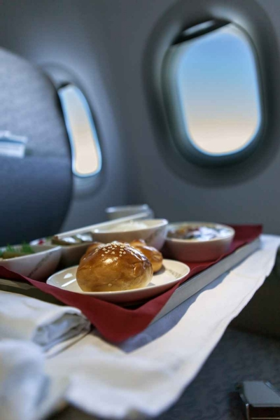 Food that has been served on a jet tray behind the seat in front of it.