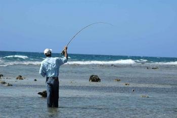 A man fly fishing near the rocky shore.