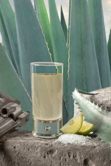 A shot of mezcal with salt, lime, and an agave plant behind it.