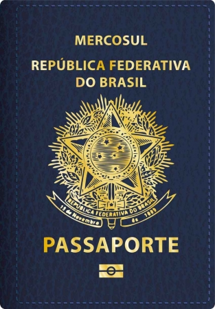 Graphic of a Brazilian passport.