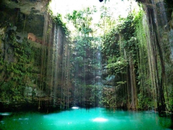 This is what a cenote looks like from the inside.