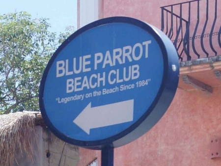 The Blue Parrot Beach Club sign.