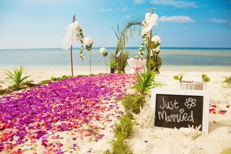 JUST MARRIED written on a chalkboard that was placed near flower petals on the beach.