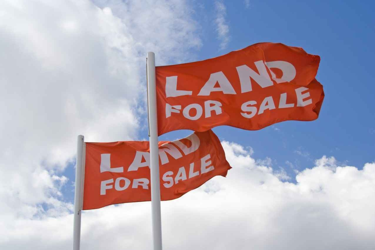 Several land for sale flags waving in the wind.