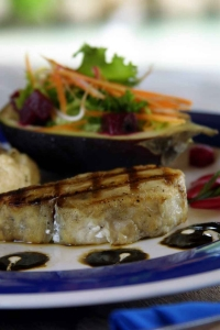 A tuna steak served with salad on a plate.