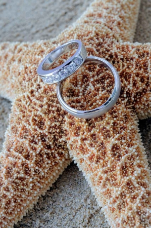 Both male and female wedding rings resting on a starfish on the beach.