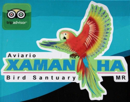 The Xaman-Ha bird sanctuary in Playacar.