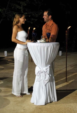 A recently married couple having a candlelit glass of wine.