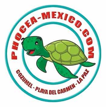 phocea-mexico-logo