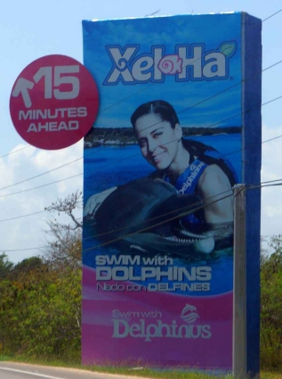 A road sign on the way to Xel-Ha themepark.