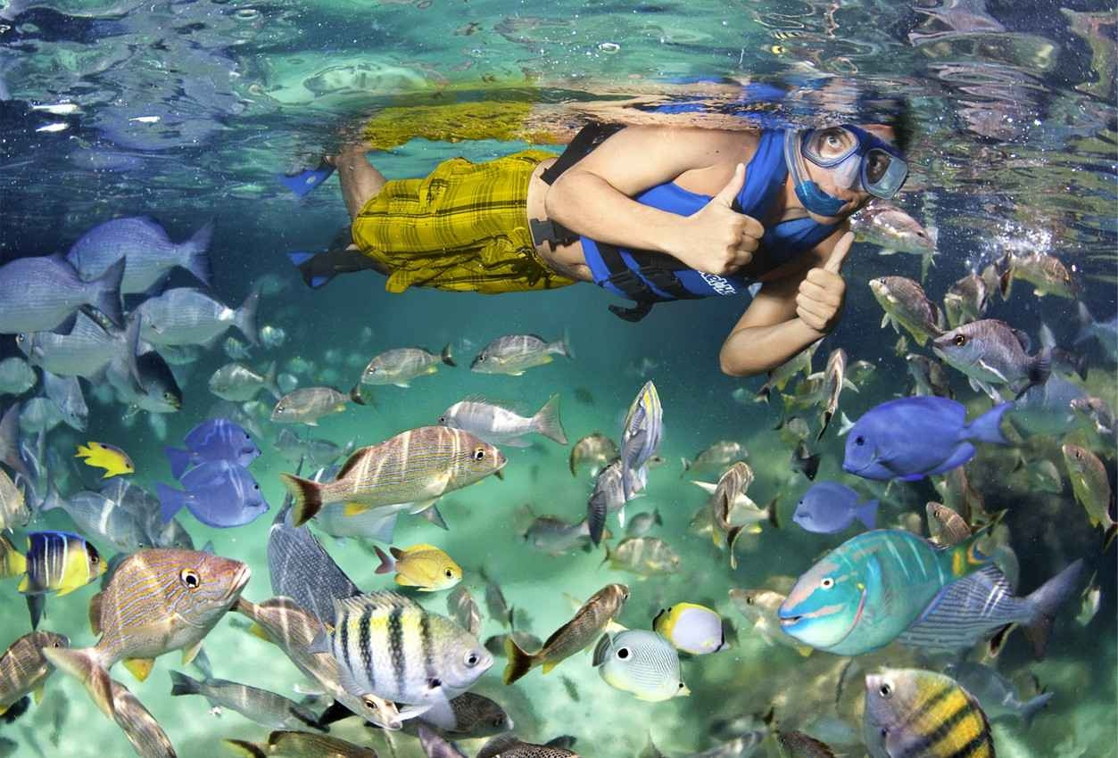A man snorkeling underwater and surrounded by lots of fish.
