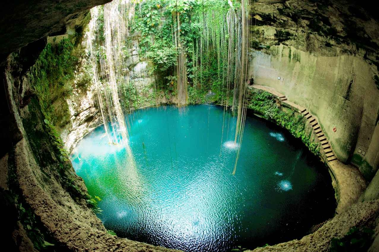 Looking down into a cenote from the hole on the top.